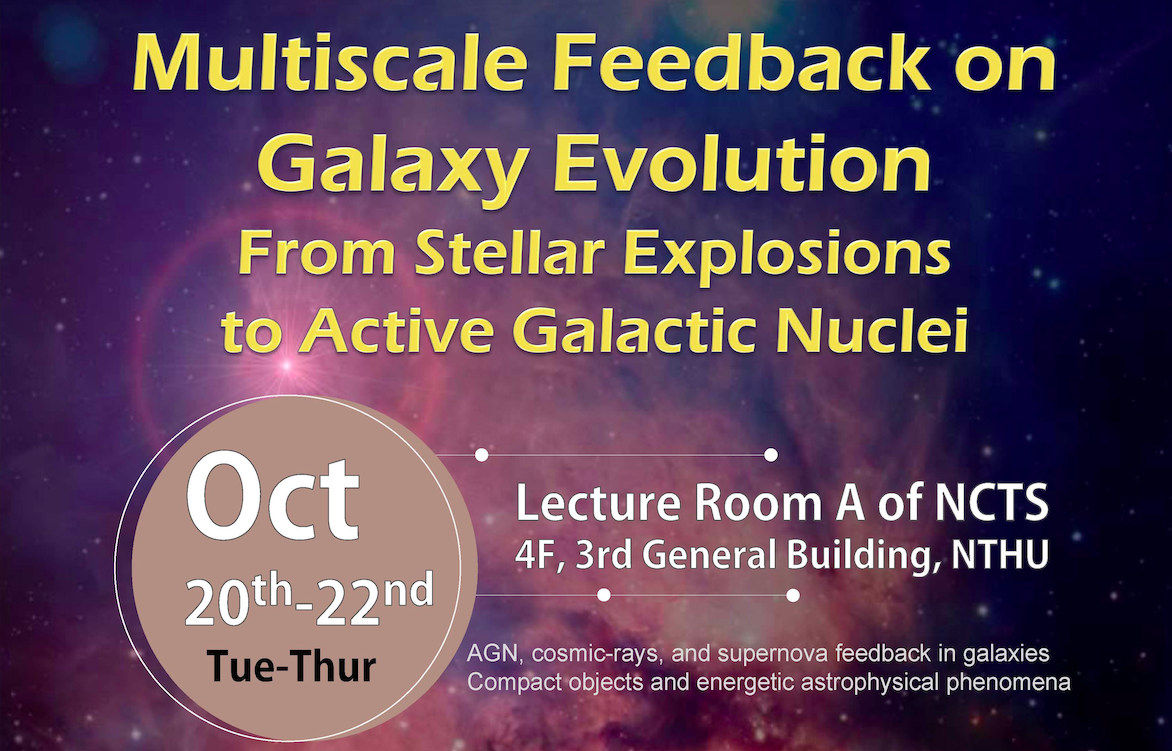 Multiscale Feedback on Galaxy Evolution: From Stellar Explosions to Active Galactic Nuclei